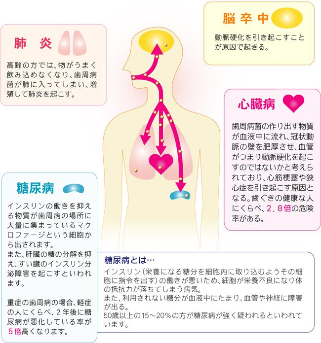 images_01_04.jpg